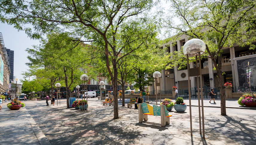 landscaping-and-trees-make-denver-beautiful